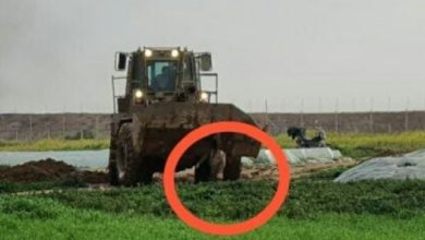 Photo of Regim Israel Menembak dan Bulldozed Jasad Pemuda Gaza